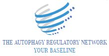 The autophagy regulatory network